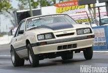 1985 Ford Mustangs / 1985 Ford Mustangs / by StangBangers