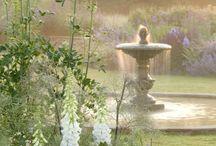 my pretty little garden / by Serena
