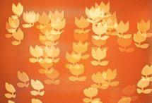 tangerine dreams / by Tracy Verdugo