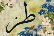 Calligraphy / by Iman Youssef