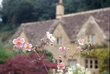 """BeAtRiX's  BunGaLow / """"Thank God I was never sent to school; it would have rubbed off some of the originality.""""---Beatrix Potter / by ◆ T A R A ◆"""