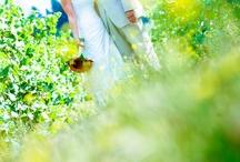 Bridal photography / by Julie Burton