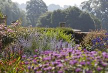 SUMMER / Summer months are best spent outdoors. Go on, explore somewhere new.  / by National Trust