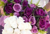 Wedding! - Flowers / by Nicole K.