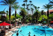 Your Summer Destination  / Our pool says it all: 6.5 acres of pure pool bliss.  The Grand Pool Complex boasts 26 cabanas, 4 pools, 3 whirlpools and the famous lazy river. #vegas #pool #party #splash #summer #spring #mgm #mgmgrand / by MGM Grand