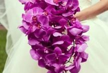 Radiant Orchid Inspiration / www.BrassTacksEvents.com www.facebook.com/BrassTacksEvents www.twitter.com/BrassTacksEvents / by Brass Tacks Events