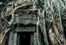 Amazing / by Kathy Dietkus