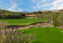 Sand Traps / Hidden away in the Santa Catalina Mountains lies our 27 hole Jack Nicklaus Signature design golf course.  / by The Westin La Paloma Resort & Spa