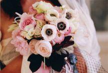 flowers / by Jess Shaffer