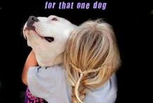 For the love of dogs / by Michelle Patriquin Robinson