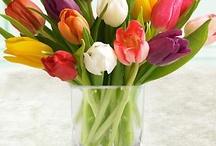 FLOWERS / FLORAL DESIGN / by GEORGIA RIVERA A.