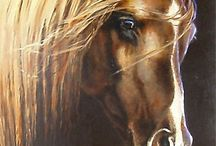 Gallery Of Horses / by Cynthia