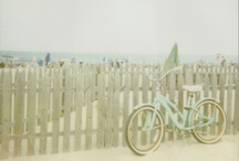bike love. / by cindylitwin