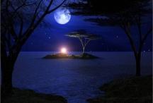 Moon / by Yana Yagolnikov