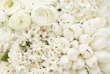 Flowers / by Sweet & Simple