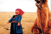 Laughing Out Loud / by Inside-Peru.com