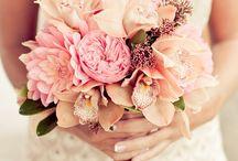 Wedding / by Mary Henderson