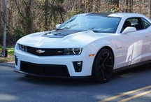 muscle cars / by Madi Warrick