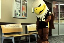 Student Resources / by Missouri Western Advising