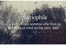 pluviophile / by Donna Hyland
