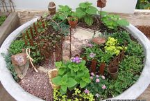 Fairy Gardens / by Crafts Direct