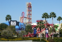 Universal Studios Florida / by On the Go in MCO