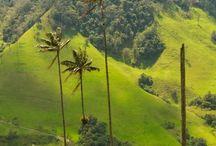 Colombia: nuestros paisajes / by Helen Camacho M.