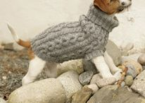 For the Doggies! / by Amanda Mera