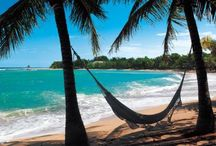 De-Stress / by Panera Bread