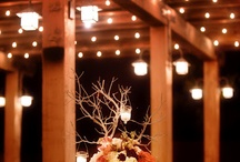 Wedding / by K W