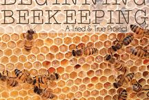 Beekeeping / Because we care about pollinators! / by McGuckin Hardware