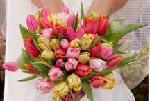 Spring wedding / by Amy Desilus