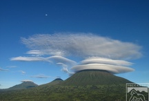 Rwanda / by Volcanoes Safaris