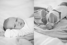 Newborn Pic Ideas / by Sarah McDaniel