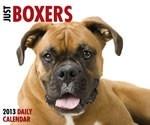 2013 Dog Breed Calendars / by MegaCalendars.com
