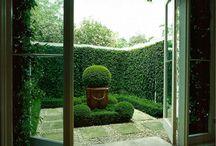 Garden / by Claire Hart Kessler