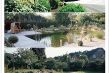 Natural Swimming Pools / by Turning Leaf Crafts /Laura Locke