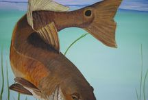 Fish on / by Kimberly Strickland