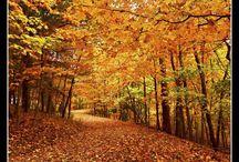 ~Beautiful Ohio~ / by Sarah Hirschler