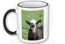 Cattle / by Angelandspot