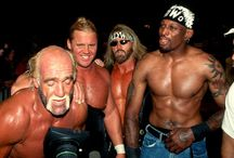 WCW the best wrestling ever / by Jon Dimucci