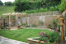 Growing my Garden / by Lori, Mrs. Sergeant