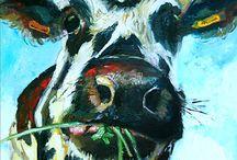 cows vaches / by Elisabeth