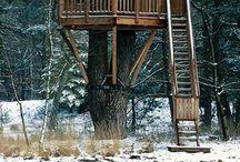 Treehouse love / by Nyssi Garza