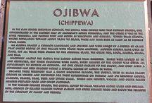 Ojibwa/Chippewa / by Debbie/Mike Cannon