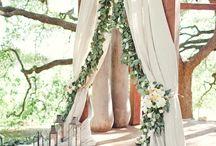 Wedding decor / by Megan Coley