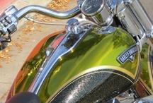 Harley Davidsons / by Julie Hogan