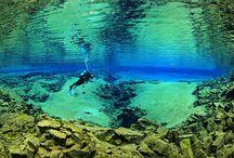 Scuba Diving/ Sport Activities / by Rachel Benavides