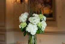Wedding / by Brittani Stevens