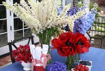 Fourth of July / by Cactus Flower Florists
